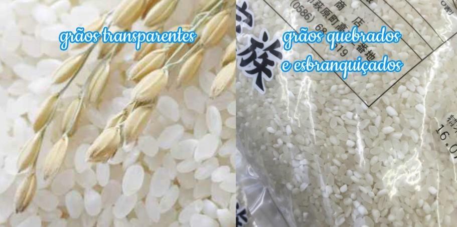 dicas para comprar arroz no Japao Kome