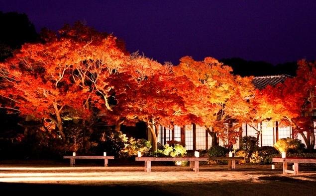 Kobe, Hyogo, outono, koyo